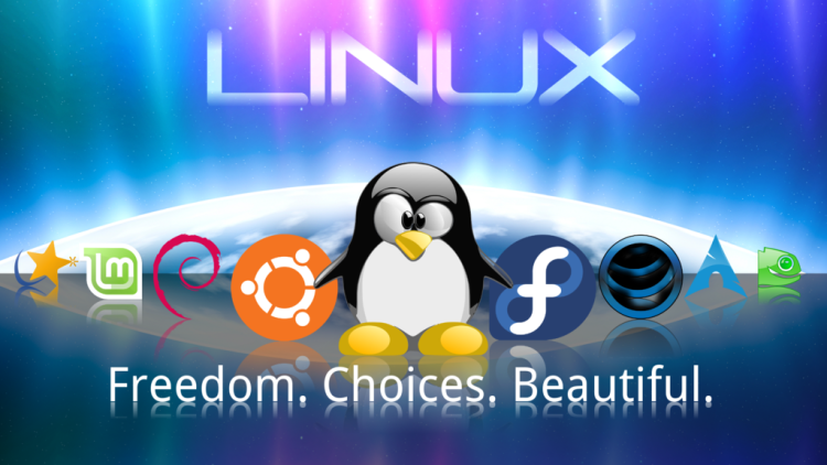 5 Reasons why Bloggers loves Linux Web Hosting